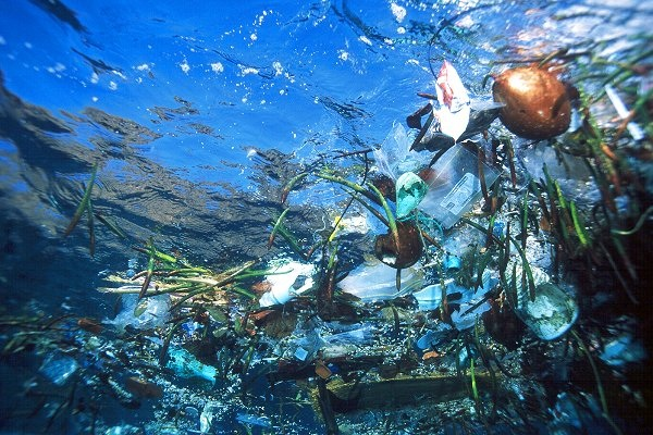 5 libri da leggere assolutamente sulla plastica in mare