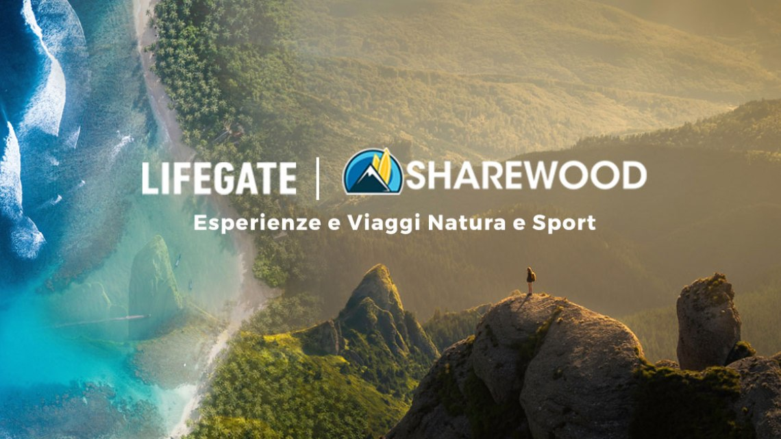 sharewood-lifegate-avs
