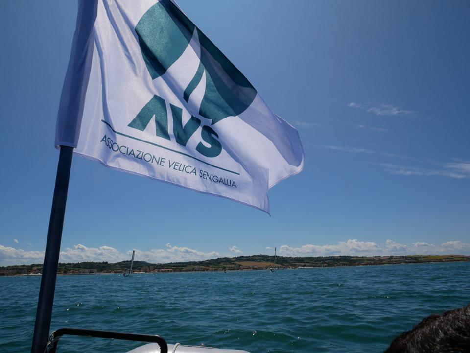 avs sail